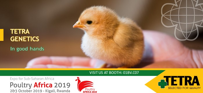 Poultry Africa 2019 kiállítás